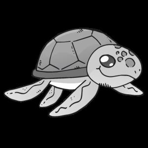 Schildkröte Kinderdesign