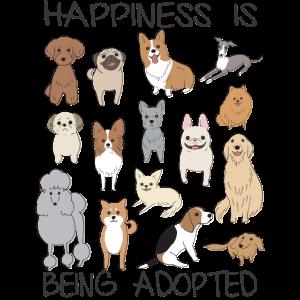 Cute Pet Shelter Dog Gift