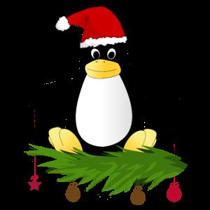 Weihnachten Pinguin Weihnachtsmütze Geschenkidee