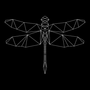 Libelle, geometrisch