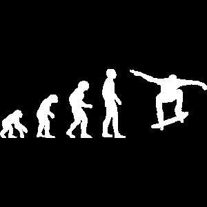 SKATEBOARD SKATEBOARDER EVOLUTION