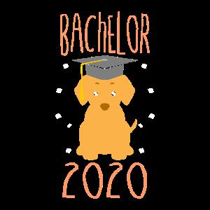 Bachelor 2020 Geschenk