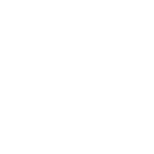 TD Eagle Drawing White