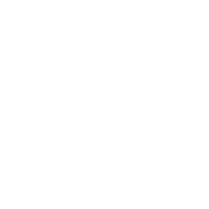 Bass Gitarre Musiker Guitar