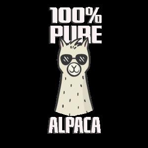 Alpaka Kuhles Alpaca Design
