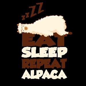 Alpaka Shirt Alpca Shirt für Alpaka Mädels Frauen