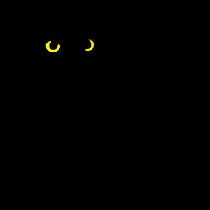 Eule Raubvogel