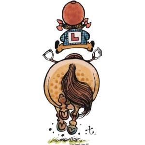 Thelwell Cartoon Reitanfängerin Im Galopp Mit Pony