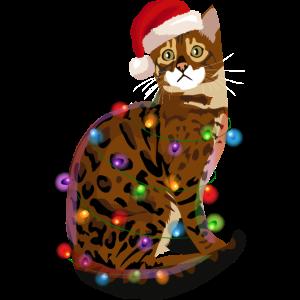 Bengalkatze Katze Lichterkette Weihnachten