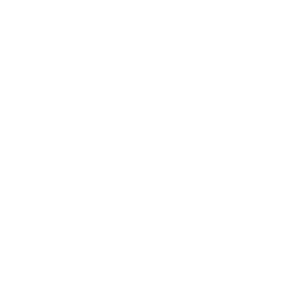 Silber Engel in Silber Metallic