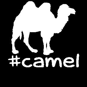 Lustiger Kamel Hashtag
