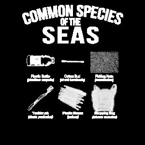Plastikverschmutzung - Häufige Arten der Meere