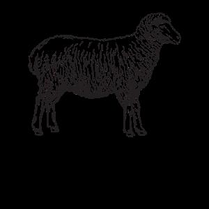 Schaf Schafe Lamm Schäfer Silhouette Geschenk