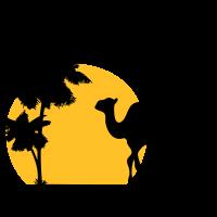 Camel - Kamel - Dromedar