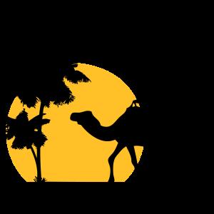 Camel - Kamel - Dromedar - Karawane