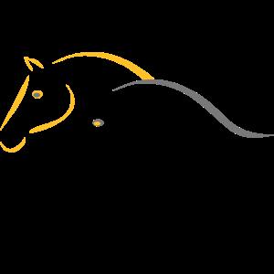 Pferde Natürlich Horsemanship Pferdeköpfe
