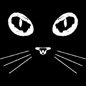 Katze Katzenaugen Cat Mietzekatze Mietze