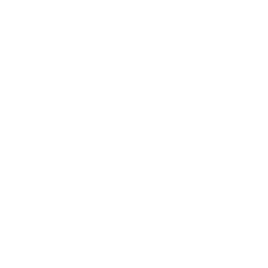 mittelfinger skelett