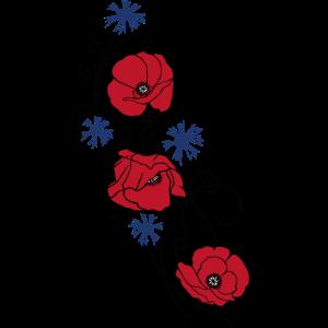 Mohnblumen und Kornblumen. Sommer Design.