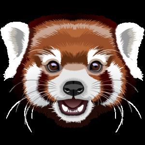 Roter Panda | Pandabär | Ailurus fulgens