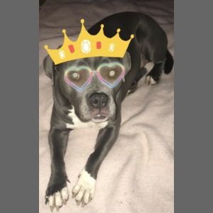 Nelly-King