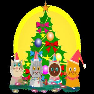 Katzen Weihnachten Katzenliebhaber Meow Christmas