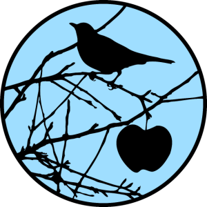 Vogel mit Apfel / Amsel / blackbird