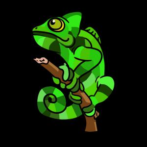 Gecko Reptilien Chamäleon