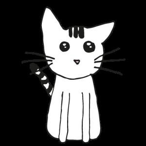 Niedliche Katze für Katzenfans