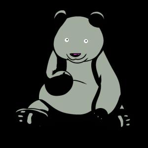 Bär Wildtiere Bären