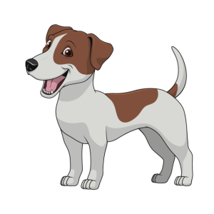 jrt Jack Russell Terrier