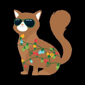 Weihnachtskatze Lichterkette Katze Xmas