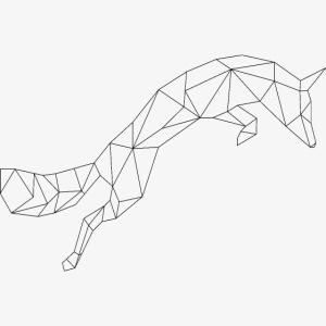 Fuchs schwarz geometrisch