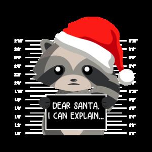 Dear Santa I Can Explain Waschbär Weihnachts Shirt