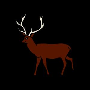 Hirsch, Waldtier