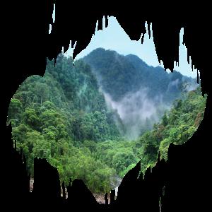 Regenwald Urwald Amazonas Farbfleck Geschenk
