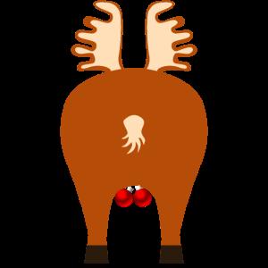 Hirsche Rentier, hinten. Deer reindeer, behind