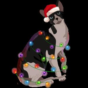 Sphynx-Katze Lichterkette Weihnachten
