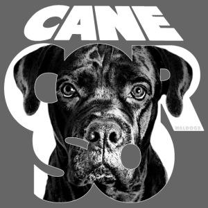 Cane Corso White
