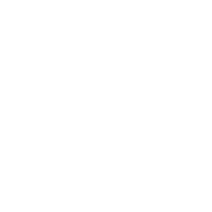 Info Shirt ● Kindergarten überlebt ● Geschenk