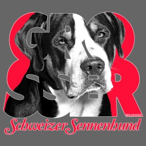 Grosser Schweizer Sennenhund Red