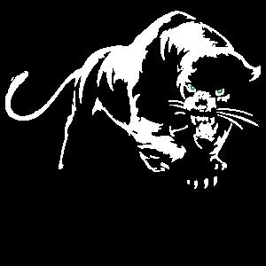 Panther Raubtier