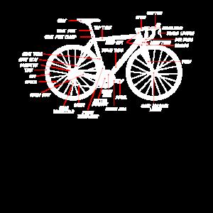 Rennrad Anatomie Rennrad Bauteile