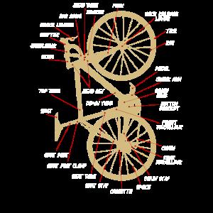 Rennrad Fahrrad Anatomie vertikal gold