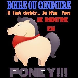Humorvoll komme ich als Pony zurück