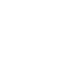 Spinnennetz comic
