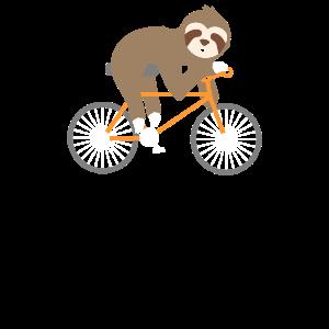 Sloth Bicycle Faultier Fahrrad
