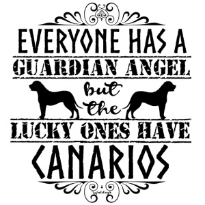 Canario Angels II