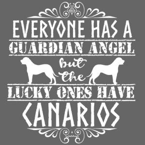 Canario Angels