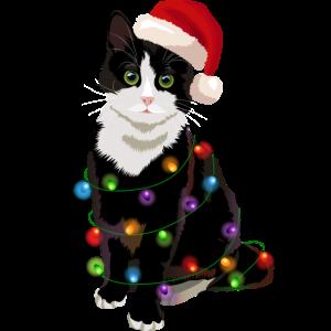 Katze Weihnachtsbaum Lichterkette Weihnachten
